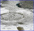 Martin-pêcheur en action (48755807347).jpg