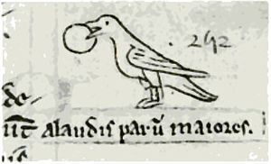 Red crossbill - Mediaeval sketch by Matthew Paris in his Chronica Majora (1254) of a crossbill holding a fruit in its beak, with the Latin words Alaudis parum majores ('a little bigger than larks').