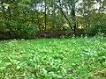 Meilengraben, Dortmund, 22.10.2013 - panoramio (11).jpg