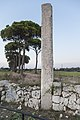 Menhir delle franite Maglie LE.jpg
