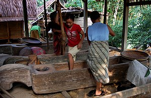 Kasepuhan - Pestling rice in the traditional fashion at Sirnarasa village