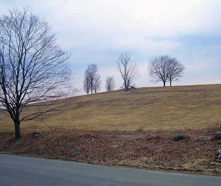 File:Michael Clayton horses hill.jpg