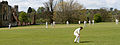 Midhurst cricket, April 2015.jpg