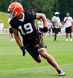 Miles Austin 2014 Browns training camp (3).jpg