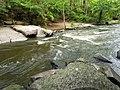 Mill Trail Umstead NC SP 4325 (6641028187) (2).jpg