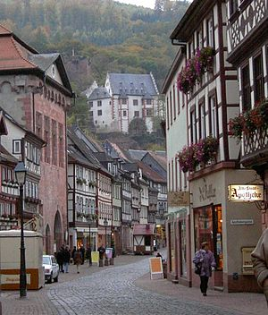 Miltenberg - Historic old town and Mildenburg