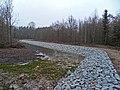 Mirostowice Dolne. Zbiornik retencyjny (^) w lesie - panoramio (1).jpg