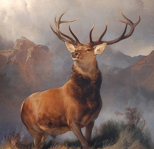 file monarch of the glen edwin landseer wikimedia commons. Black Bedroom Furniture Sets. Home Design Ideas