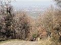 Monte Mauro in salita - panoramio.jpg