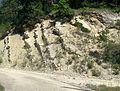 Montferrand-La-Fare Strates marne calcaire.jpg