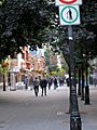 Montréal quartier latin 397 (8213743670).jpg