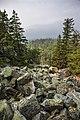 Moskal ridge (28270933090).jpg