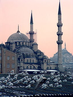 Mosques in Istanbul at dusk