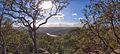Mount Kuring-gai Track - panoramio (1).jpg