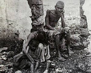 Great Famine of Mount Lebanon - Image: Mount Lebanon Great Famine