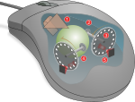 Mouse mechanism diagram.svg