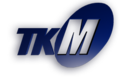 Mozyr tv channel logo.png