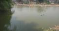 Muchalinda lake 2.png