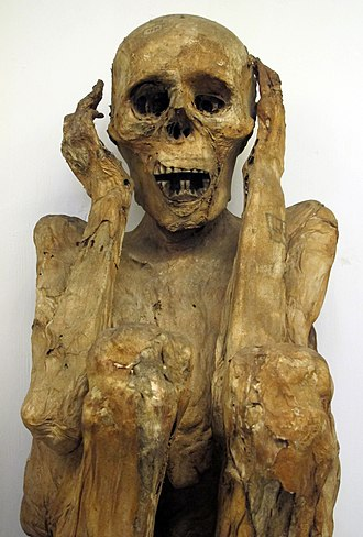 The Scream - A Peruvian mummy at La Specola, Florence.