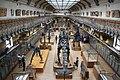 Muséum national d'histoire naturelle, Paris, August 2010.jpg