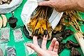 Myanmar Illicit Endangered Wildlife Market 01.jpg