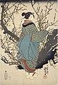 NDL-DC 1307775 03-Utagawa Kuniyoshi-夜の梅-crd.jpg