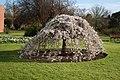 National Botanic Garden,Dublin,Ireland - panoramio (56).jpg
