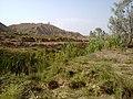 Navidhand new 440 - panoramio.jpg
