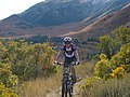 Nebo Loop Scenic Byway - Mountain Biker in Lower Payson Canyon - NARA - 7720637.jpg