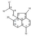 Neoanfilectano - Numeración.png