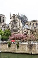 Notre-Dame de Paris - Après l'incendie 04.jpg