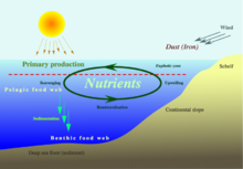external image 220px-Nutrient-cycle_hg.png