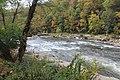 Ohiopyle fall colors - panoramio (4).jpg