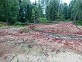 Okhanskiy r-n, Permskiy kray, Russia - panoramio (35).jpg