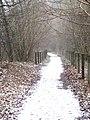 Old railway line to Lydbrook - Feb 2012 - panoramio.jpg