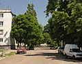 Olexandria Sverdlova SAM 0064 35-103-0068.JPG