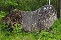 Ookivi Saaremaal.jpg