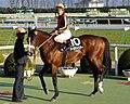 Oro-Meister20100116.jpg