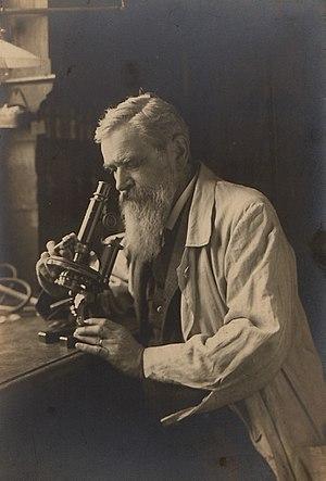 Otto Bütschli - Otto Bütschli in 1916