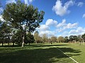Oxford, UK - panoramio (105).jpg