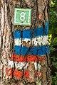 Pörtschach Bannwaldweg 8 Wegnummer und Wegmarkierungen 25082019 7076.jpg