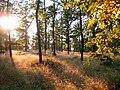 Přírodní park Baba388.jpg