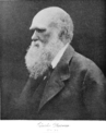 PSM V62 D392 Charles Darwin.png