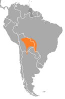 Southeastern Bolivia stretching over into Brazil