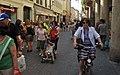 Padova juil 09 290 (8380766036).jpg