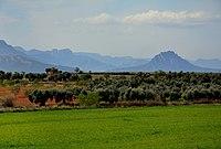 Paisatge de la Terra Alta, Tarragona.jpg