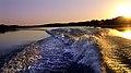 Pantanal JF2.jpg