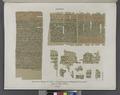 Papyrus. Hieratischer Papyrus. No. X. XI. Papyrusfragmente in Phoenicischer Cursivschrift. (jetzt im K. Museum zu Berlin.) (NYPL b14291191-44353).tiff