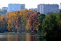 Parc de la Tête d'Or en automne (2).JPG