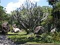 Parque del Este 2012 042.JPG